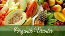 organik1